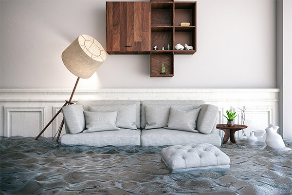 water damage cleanup miami