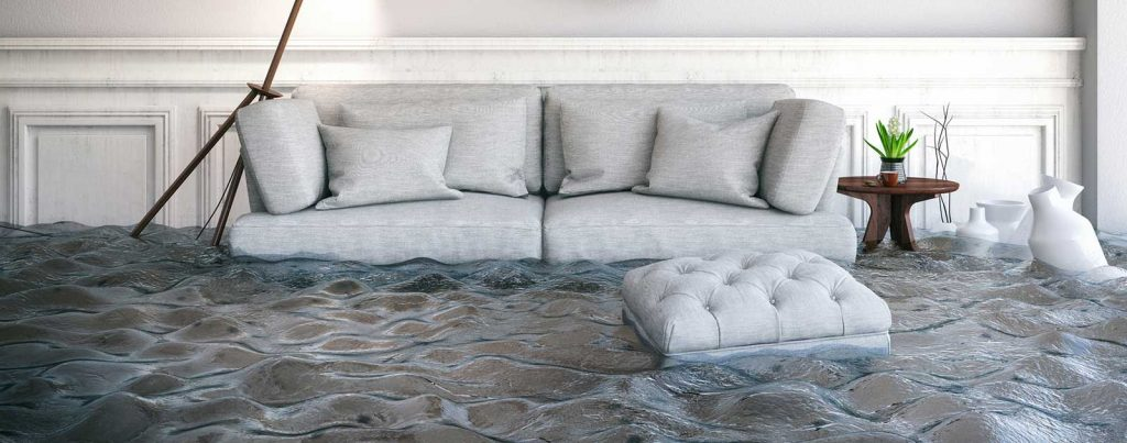Disaster Recovery Couch